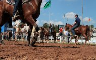 EXPOINTER 2014 - Copa AVERT Cross Country