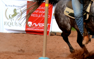 EXPOINTER 2015 - COPA AVERT CROSS COUNTRY